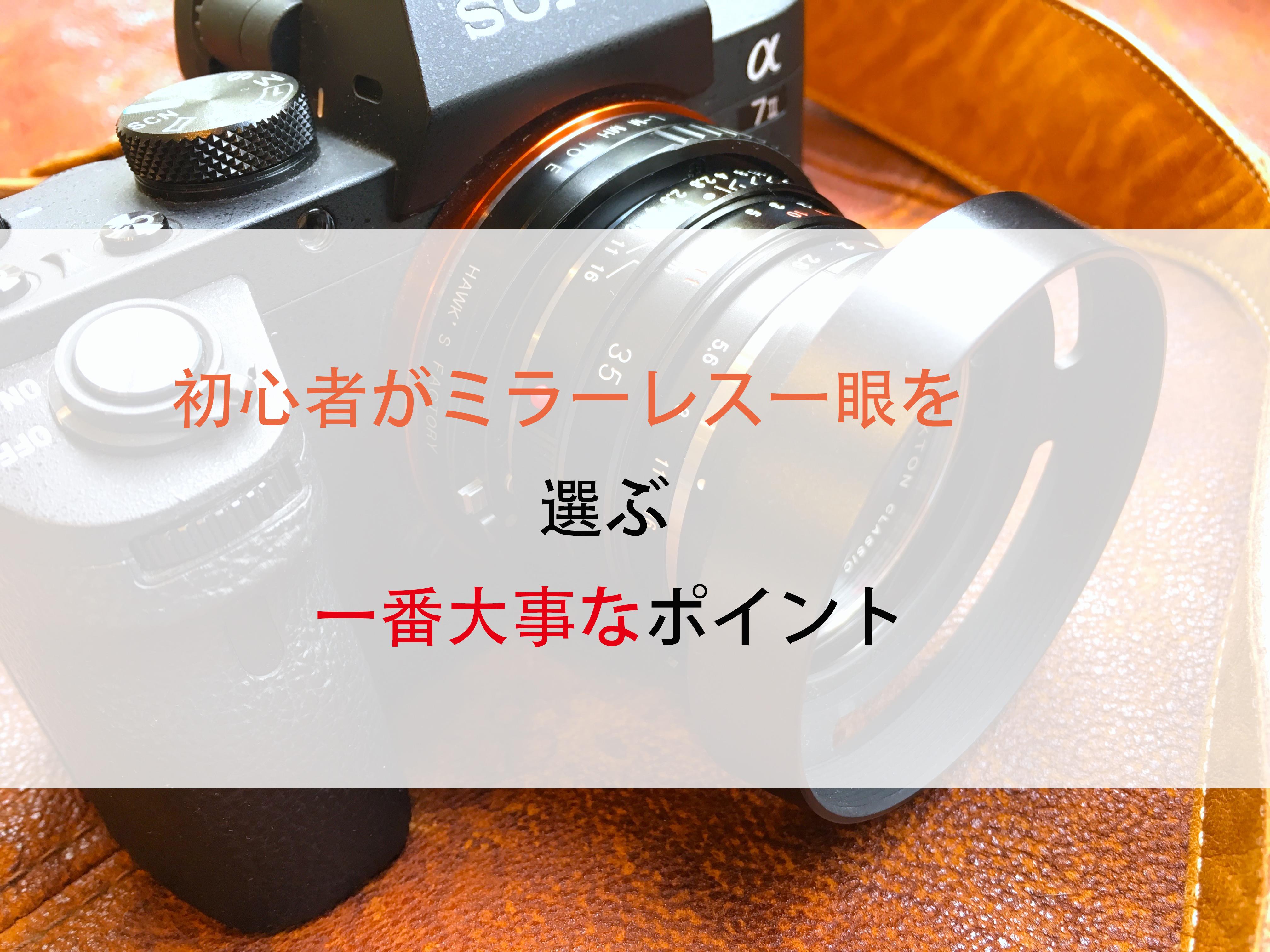 カメラ a7II