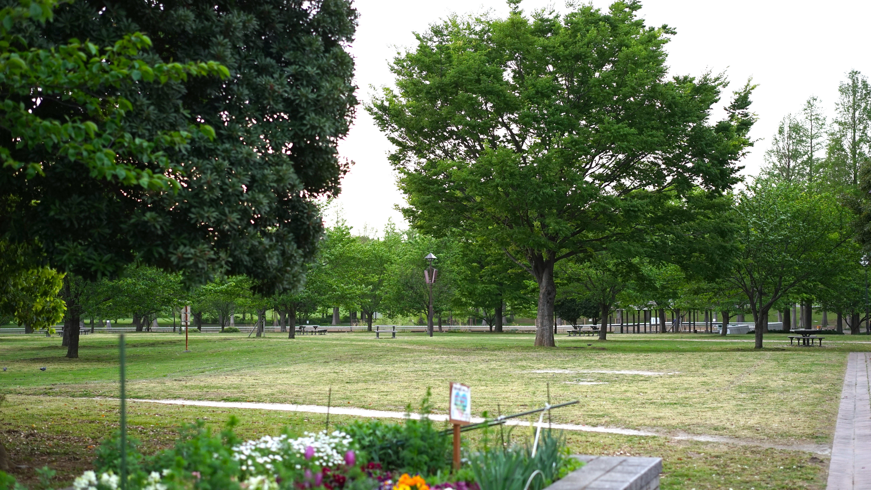 舎人公園 キャンプ場