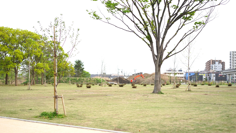舎人公園 バーベキュー場